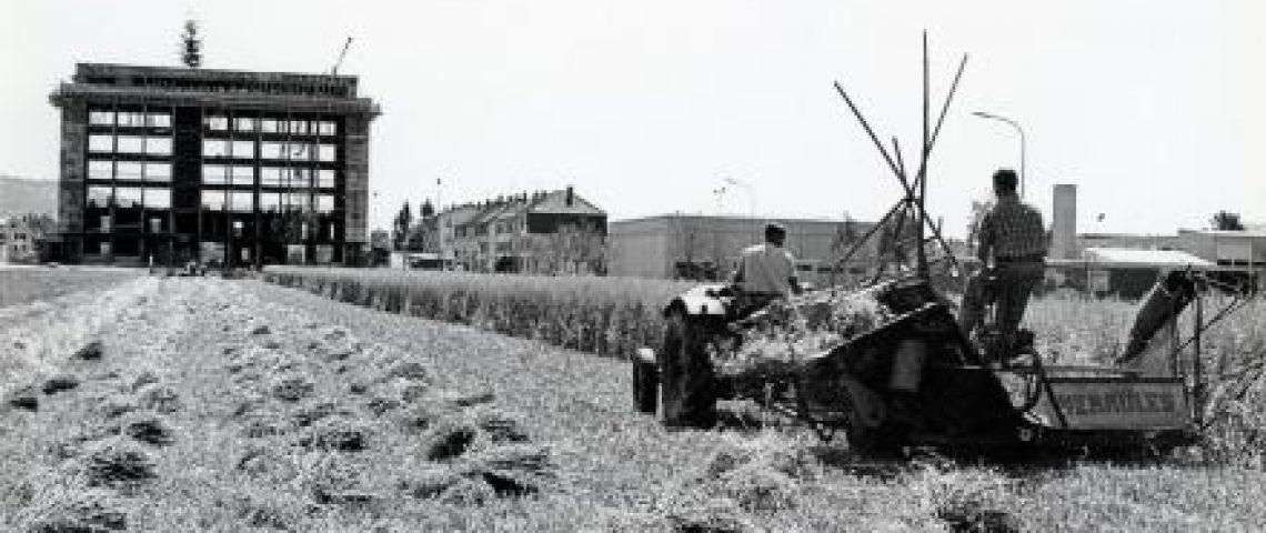50 Jahre Rathaus Wettingen