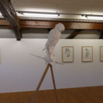 Ausstellungsansicht Victorine Müller